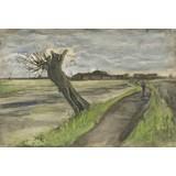 Pollard Willow - Card / A4 reproduction