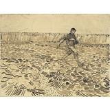 The Sower - Multimedia / Film / Video