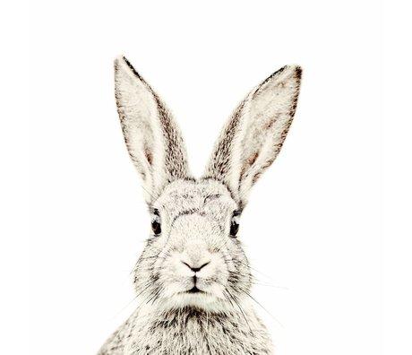Groovy Magnets Kindermagneetbehang konijn small premium vinyl met ijzerdeeltjes 63,5x265 cm
