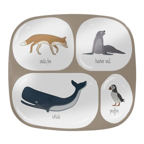 Sebra Children's Arctic animals four squares light brown melamine 24x21x2cm