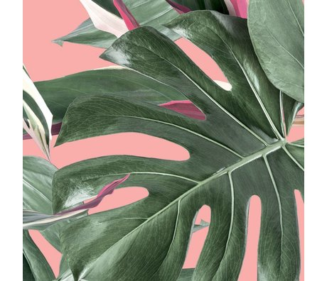 KEK Amsterdam Behang Botanical leaves roze vliesbehang 97,4x280cm (2 sheets)