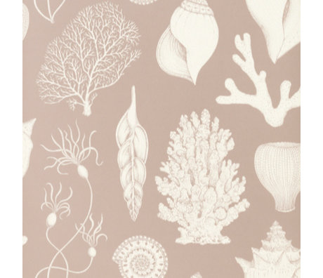Ferm Living kids Behang Katie Scott Shells Dusty roze 10x0,53m