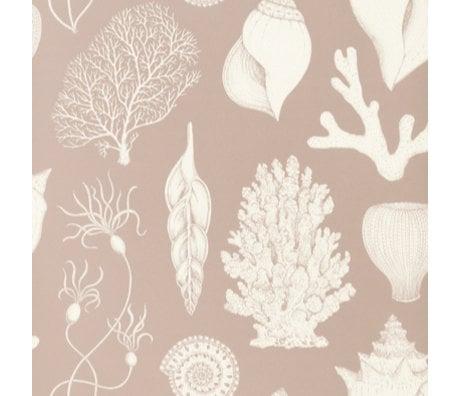 Ferm Living Wallpaper Katie Scott Shells Dusty pink 10x0.53m