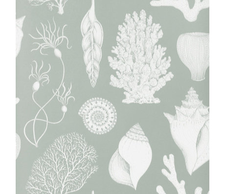 Ferm Living Behang Katie Scott Shells Aqua blauw 10x0,53m