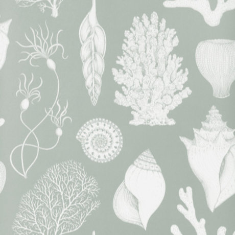 Ferm Living kids Wallpaper Katie Scott Shells Aqua blue 10x0.53m