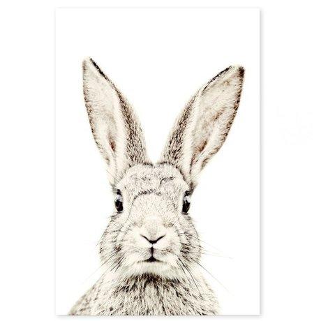 Groovy Magnets Kindermagneetsticker rabbit zelfklevend vinyl met ijzerdeeltjes 60x90cm