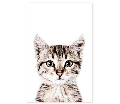 Groovy Magnets Kindermagneetsticker cat zelfklevend vinyl met ijzerdeeltjes 60x90cm