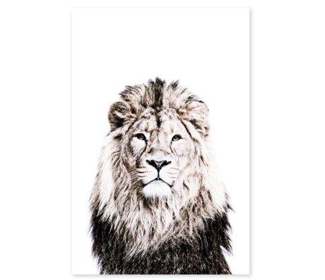 Groovy Magnets Kindermagneetsticker lion zelfklevend vinyl met ijzerdeeltjes 60x90cm