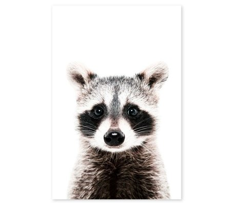 Groovy Magnets Kindermagneetsticker raccoon zelfklevend vinyl met ijzerdeeltjes 60x90cm