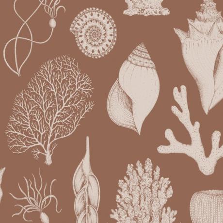 Ferm Living Kids wallpaper Katie Scott Shells toffee brown non woven non-woven wallpaper 53x1000cm