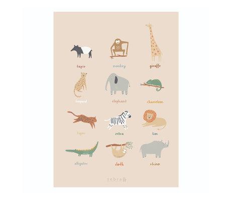 Sebra Poster Wildlife multicolour papier 50x70cm