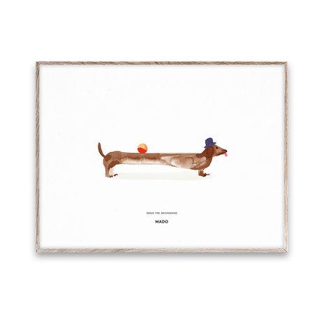 Paper Collective shop Kinderposter Doug the Dachshund multicolour papier 50x70cm