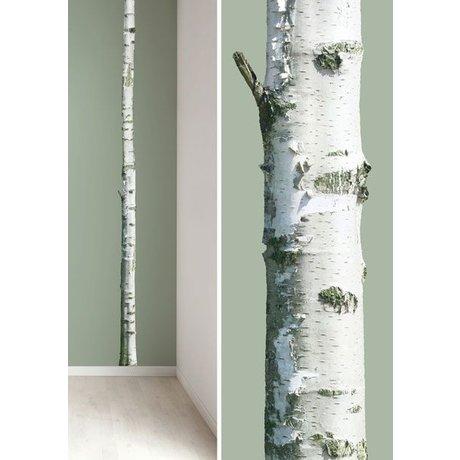 KEK Amsterdam Wall Sticker trunk 'Home Tree 2' brown / green vinyl 8x260cm