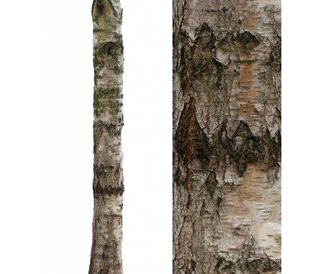 KEK Amsterdam Wall Sticker trunk 'Home Tree 4' brown / green vinyl 28x260cm