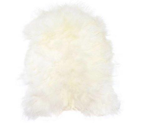 HK-living Schapenvacht creme/wit +/-100X90cm, IJslandse schapenvacht wit