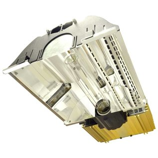 DimLux Expert Series 600W EL UHF (full fixture)