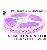 AppLamp RGBW+Neutraal Wit ULTRA LED strip  | 4 IN 1 LED | 60-84Led p.m. | 12V-24V