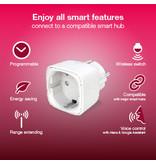 INNR INNR Zigbee Smart powerplug stekker aan/uitschakelaar 2-pack 2200W