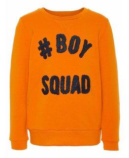 Name it Name it - Trui Boys Squad Autumn Maple