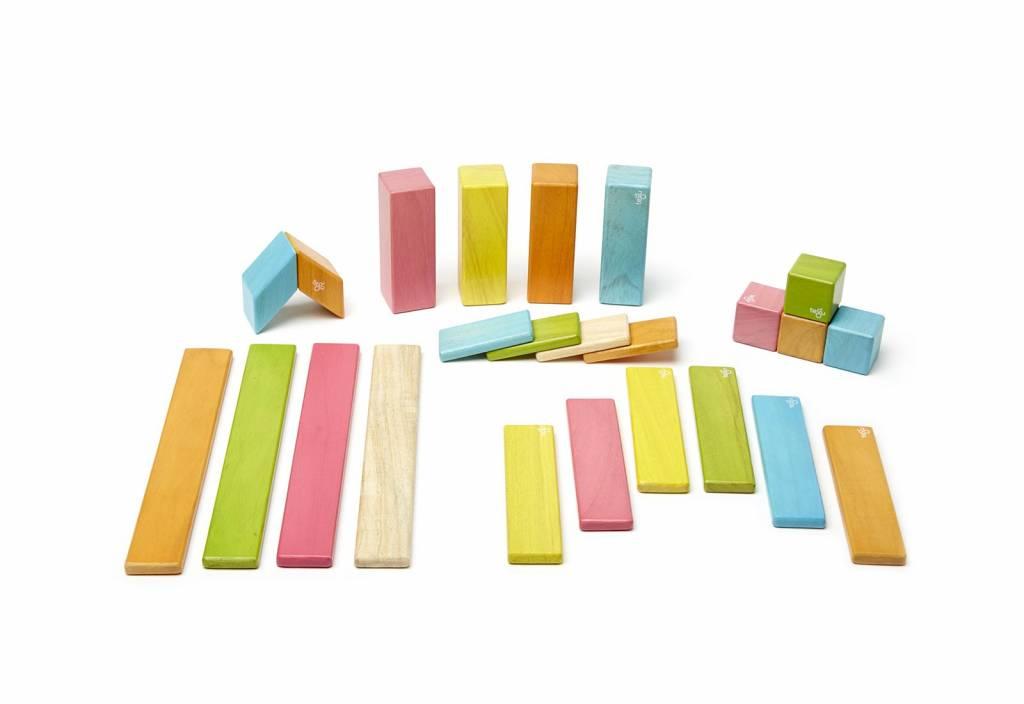 Tegu Tegu magnetische hout blokken (24 stuks)