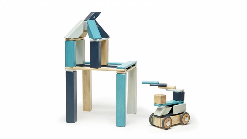 Tegu Tegu magnetische hout blokken (42 stuks)