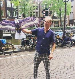Adelaar Adelaar vlieger