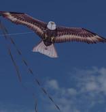 Adelaar vlieger