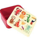 Lunchbox Lunchbox Dieren