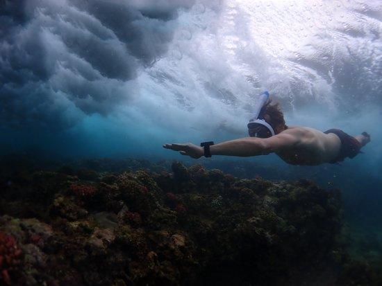 Ocean Reef Aria UNO Snorkelmasker L/XL