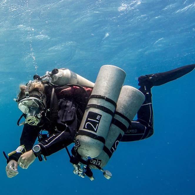 Ocean Reef Predator