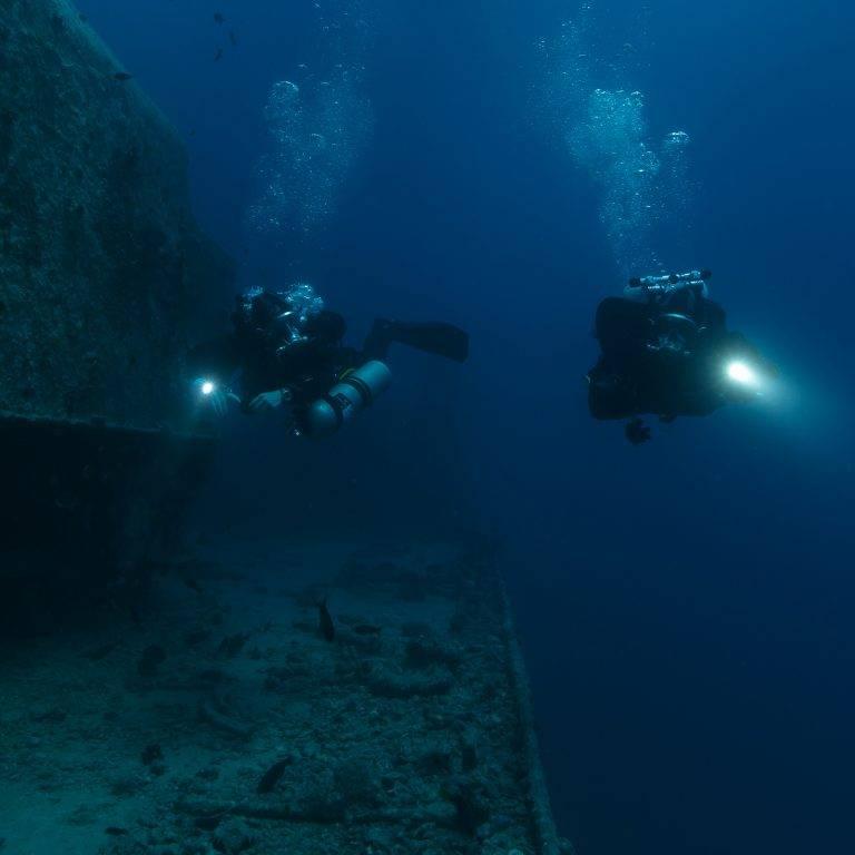 Ocean Reef Predator  Specials