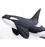 Gaby Orca