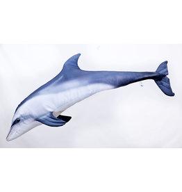 Gaby Dolfijn