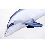 Gaby Dolphin