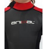 Animal Animal 3mm Full Suit Kids