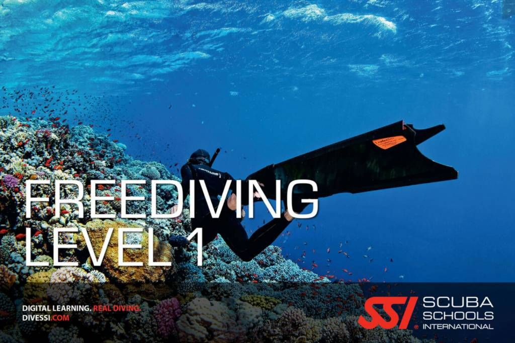 SSI SSI Manual Level 1-2