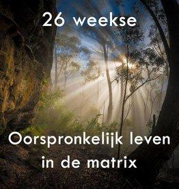 26 weekse | Oorspronkerijk leven in de matrix