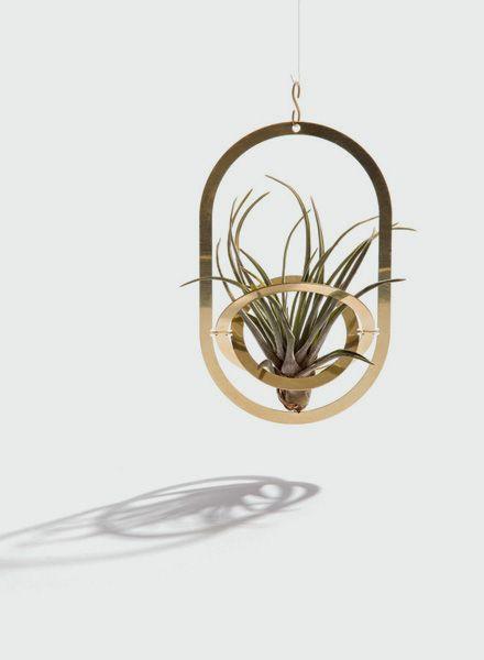 Fundamental Air Pendant I Pflanzenhalter
