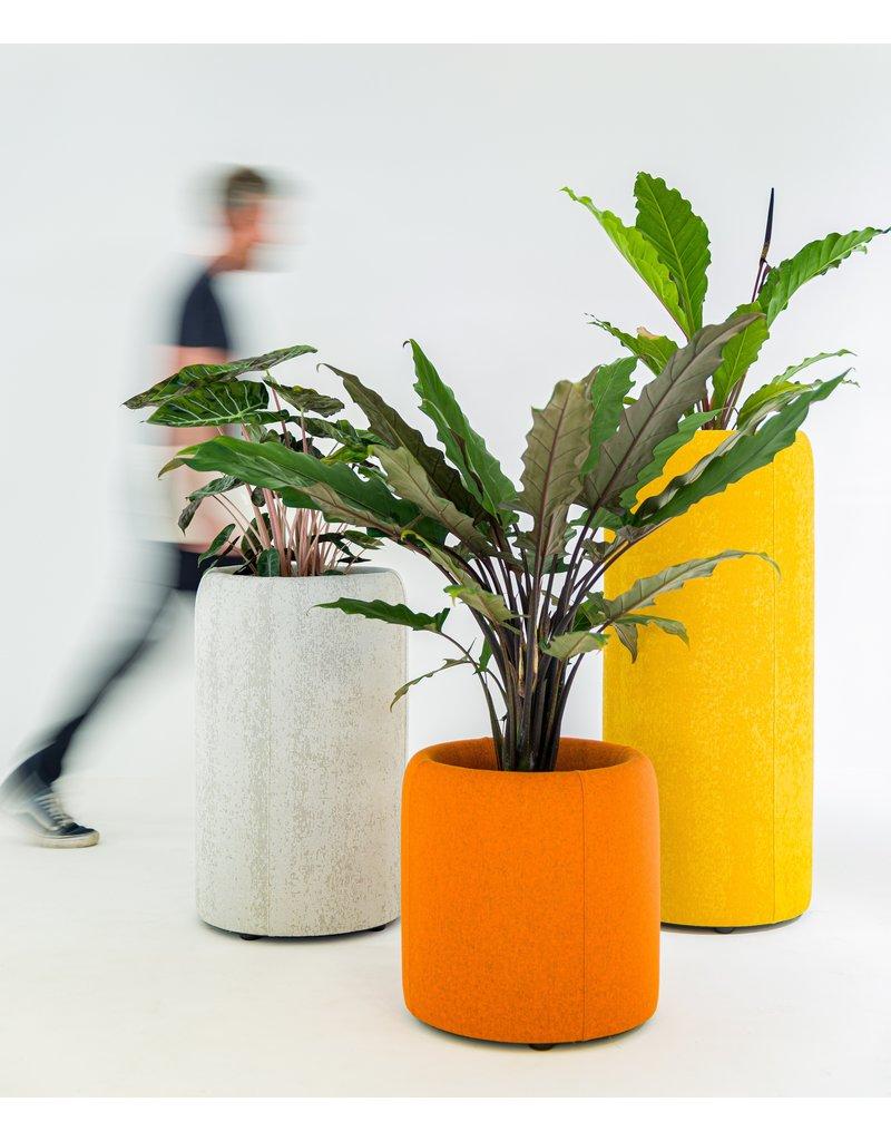 BuzziSpace BuzziSpace BuzziPlanter akoestische plantenbak