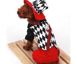 Hippe Hondenkleding