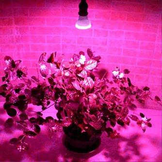 LED Groeilampen voor Planten