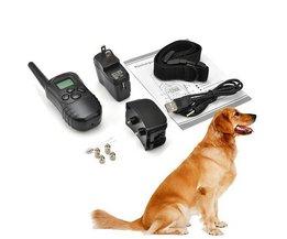 Trainingshalsband Hond