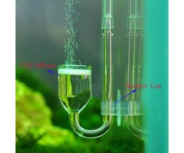 CO2 Diffuser voor Aquariums
