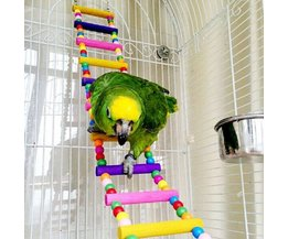 Vogel schommel Kleuren