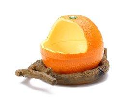 Voederbak Vogels Oranje Sinaasappel