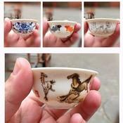 Beschilderd Chinees Theekopje van Porselein