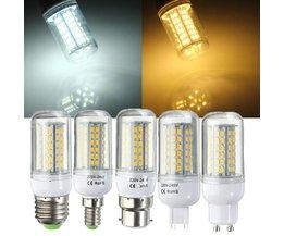 Energiezuinige Verlichting Voor Diverse Fittingen