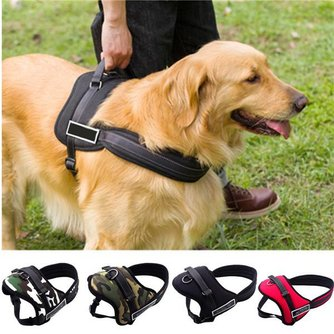 Hondentuig Verstelbaar