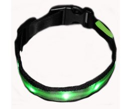 LED Halsband XL