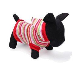 Sweater voor Hond Gestreept